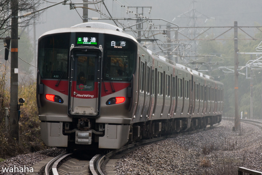 290218senohachi-33.jpg