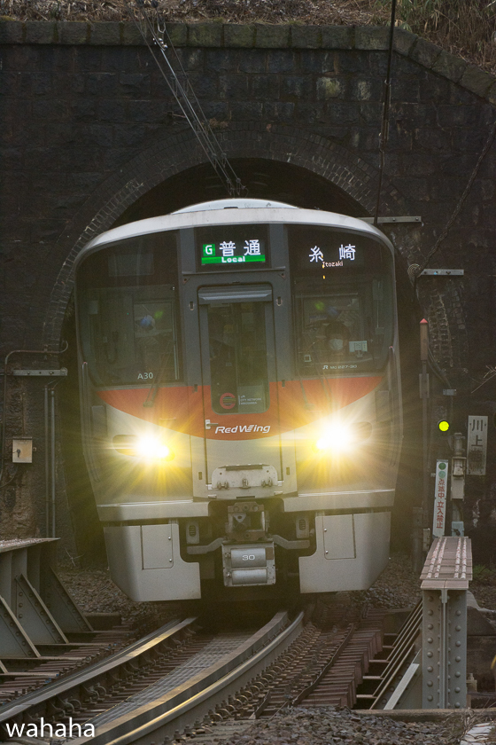 290218senohachi-40.jpg