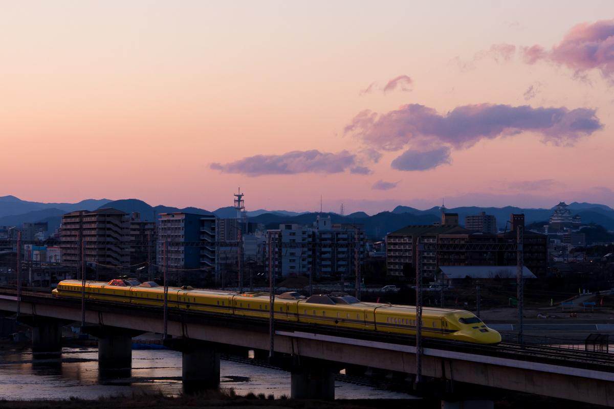 290307ichikawa-2c.jpg