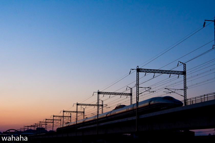 290307ichikawa-3b.jpg