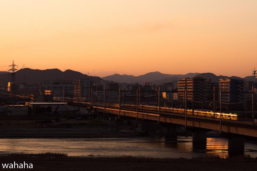 290307ichikawa-5.jpg