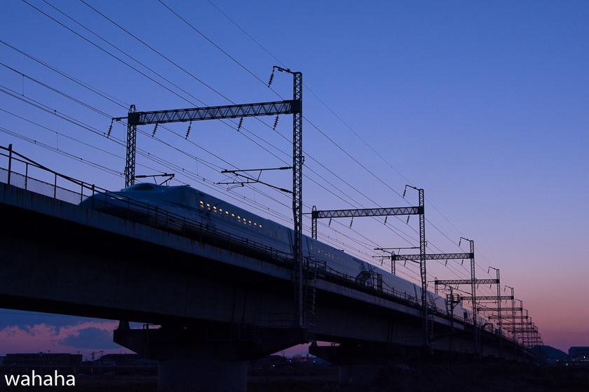290307ichikawa-6.jpg