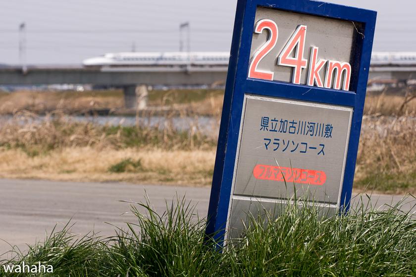 290318kakogawa_sinkansen-3b.jpg