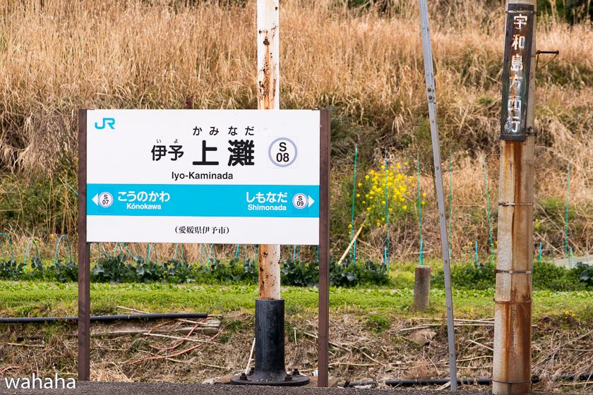 290325iyokaminada-5.jpg