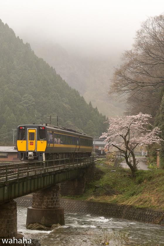 290409chizukyukou-1.jpg