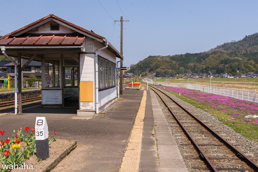 290416tantetsu-16.jpg