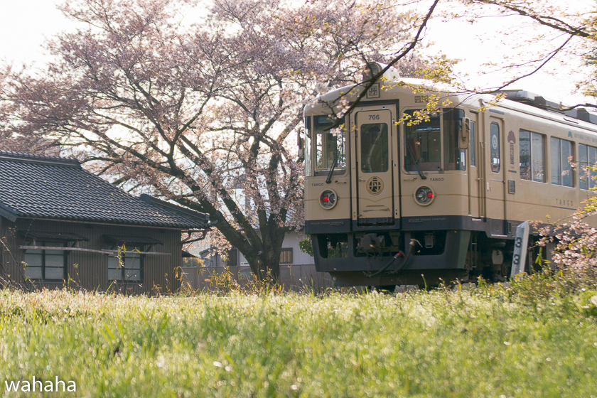 290416tantetsu-2.jpg