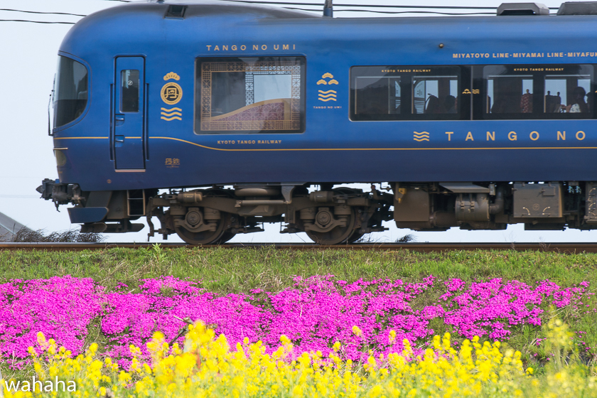 290416tantetsu-9.jpg
