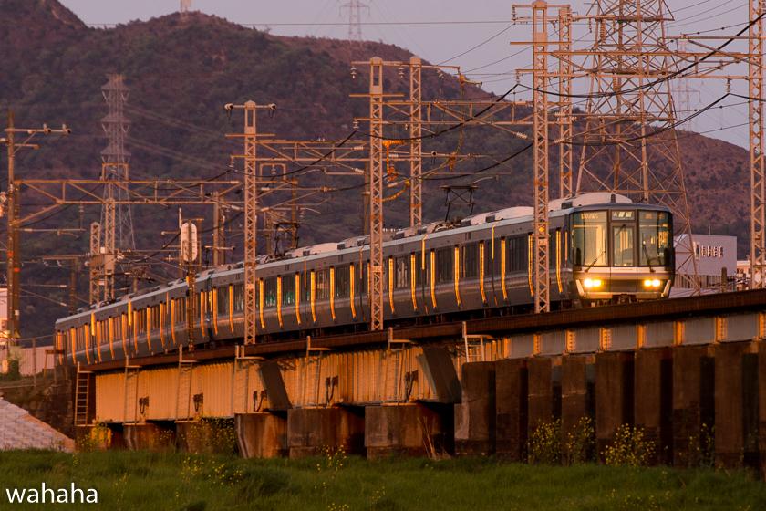 290424ichikawa-1.jpg