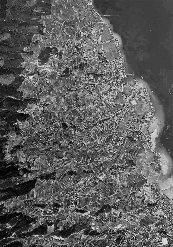 19480407(S23)a.jpg