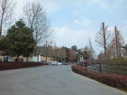 鏡山公園で散歩20170306-4