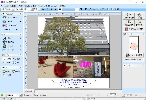 DVDLabel02.jpg