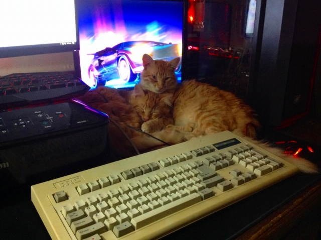 Mechanical_Keyboard91_12.jpg