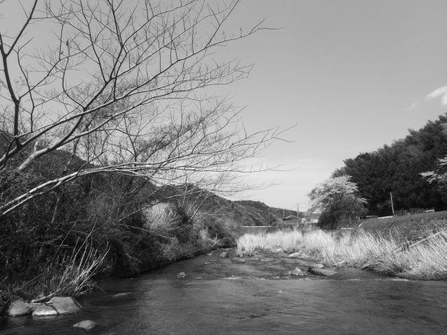 深山幽谷136b