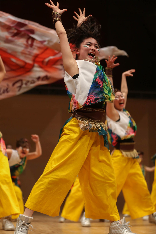 Dancin Festa 舞祭組.jpg
