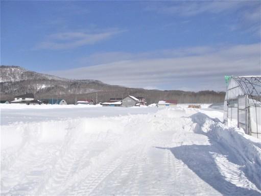 20170227_吹雪後の除雪