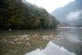 銚子川キャンプ場上流2