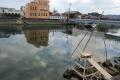 シロウオ漁 広川2011.03.09.