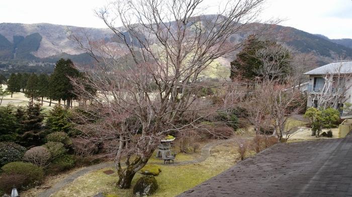いちい亭風呂部屋 (4)