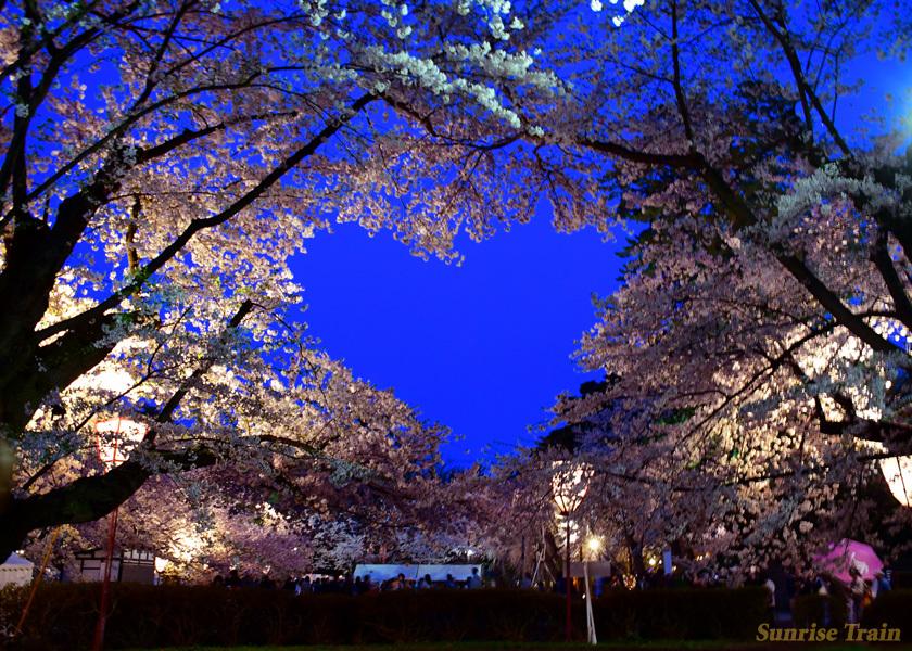 ハート 弘前 桜