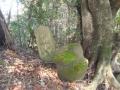 尾根上石碑1