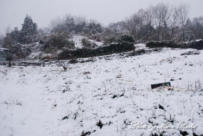 川原谷の雪景色