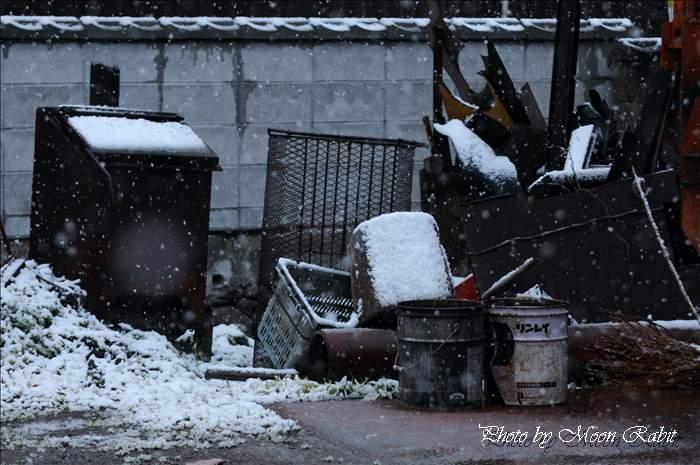 雪と廃品 愛媛県西条市中野