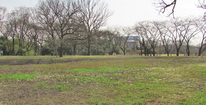 sakurasou170312-107.jpg