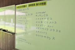 shouwa170429-202.jpg