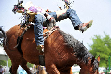 blog (6x4@300) Yoko 118 Livermore Rodeo, Bareback Bronco 3, Cody Kiser (72, Carson City, NV)_DSC6954-6.11.16.(3).jpg