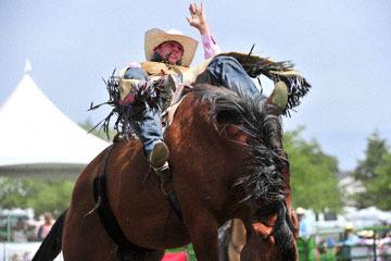 blog (6x4@300) Yoko 118 Livermore Rodeo, Bareback Bronco 3, Cody Kiser (72, Carson City, NV)_DSC6953-6.11.16.(3).jpg