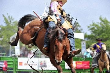 blog (6x4@300) Yoko 118 Livermore Rodeo, Bareback Bronco 3, Cody Kiser (72, Carson City, NV)_DSC6951-6.11.16.(3).jpg