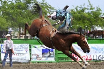 blog (6x4@300) Yoko 118 Livermore Rodeo, Bareback Bronco 5, Anthony Lewis (NS) 2_DSC7007-6.11.16.(3).jpg