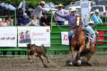 blog (6x4@300) Yoko 118 Livermore Rodeo, Tie-Down 1, Roy Branco (9.2 Chowchilla, CA) 2_DSC7047-6.11.16.(3).jpg