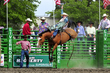 blog (6x4@300) Yoko 118 Livermore Rodeo, Bareback Bronco 6, Zack Brown (? Red Bluff, CA)_DSC7025-6.11.16.(3).jpg