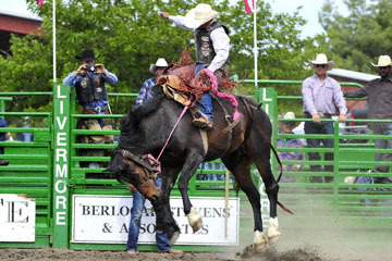 blog (6x4@300) Yoko 119 Livermore Rodeo, Saddle Bronco 2, Joaquin Real (NS Santa Paula, CA) 2_DSC7230-6.11.16.(4).jpg