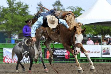 blog (6x4@300) Yoko 119 Livermore Rodeo, Saddle Bronco 6, Jacob Phillips (NS Vista, CA) 2_DSC7329-6.11.16.(4).jpg