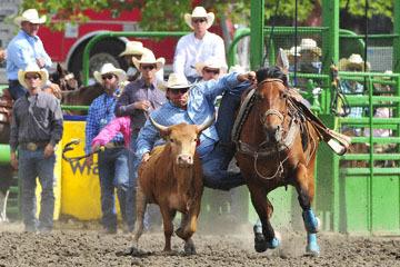 blog (6x4@300) Yoko 120 Livermore Rodeo, Steer Wrestling 6, Charles Harris (6.3 Salinas, CA) 2_DSC7454-6.11.16.(5).jpg