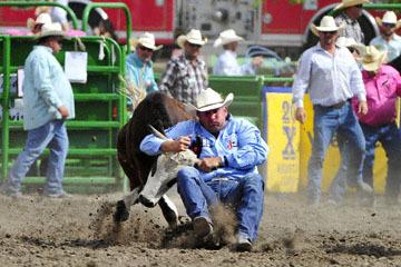 blog (6x4@300) Yoko 120 Livermore Rodeo, Steer Wrestling 7, Tom Lewis (10.2 Lehi, UT) 2_DSC7472-6.11.16.(5).jpg