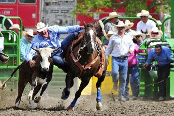 blog (6x4@300) Yoko 120 Livermore Rodeo, Steer Wrestling 7, Tom Lewis (10.2 Lehi, UT) 2_DSC7469-6.11.16.(5).jpg