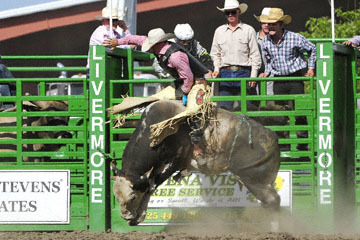 blog (6x4@300) Yoko 122 Livermore Rodeo, Bull Riding, Dustin Marberry (79.5 Porterville, CA) 2_DSC7913-6.11.16.(7).jpg