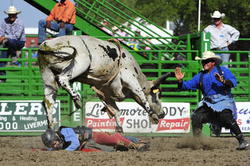 blog (6x4@300) Yoko 122 Livermore Rodeo, Bull Riding, Justin Rickard (75 Nuevo, CA) 2_DSC7899-6.11.16.(7).jpg