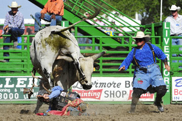 blog (6x4@300) Yoko 122 Livermore Rodeo, Bull Riding, Justin Rickard (75 Nuevo, CA) 2_DSC7897-6.11.16.(7)
