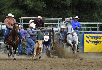 blog (6x4@300) Yoko 76 Rowell Ranch Rodeo, Slack, Steer Wrestling, ? (NT), Hazer-Ory Lemmons_DSC8160-5.20.16.(2).jpg