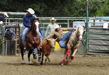 blog (6x4@300) Yoko 76 Rowell Ranch Rodeo, Slack, Steer Wrestling, Josh Garner (5.2)_DSC8107-5.20.16.(2).jpg