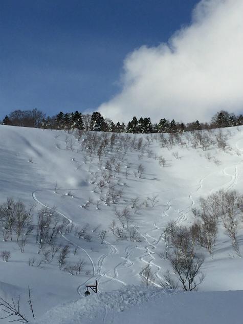 ブログ八甲田10