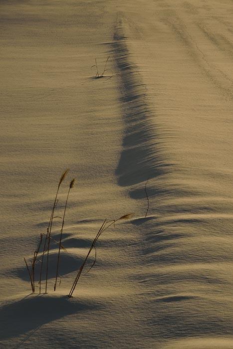 雪原・模様5