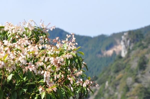 1工石山17.04.15