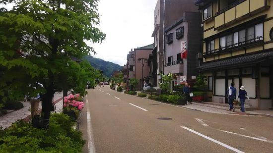 yamanaka0505 (1)