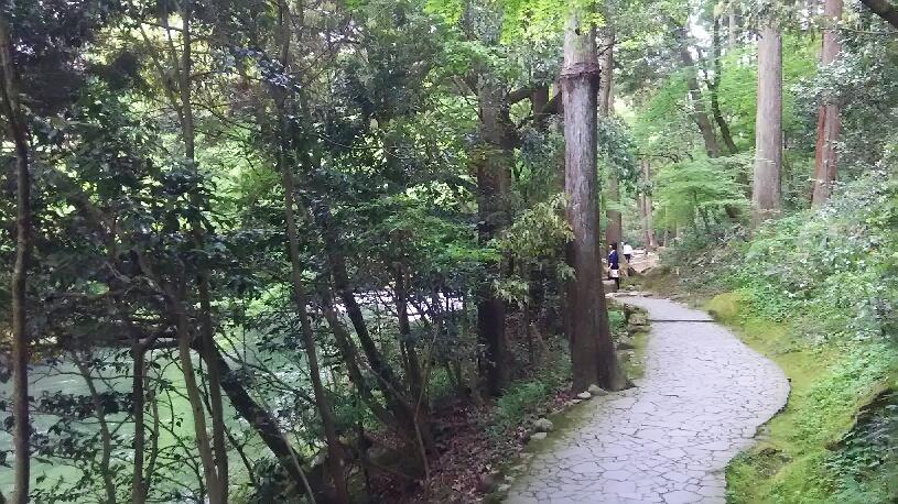 yamanaka0505 (7)
